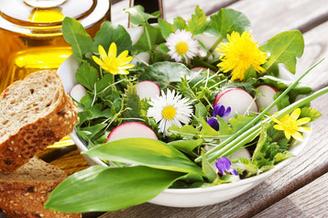 Frühlingssalate