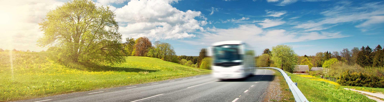 Busreisen und Reisegruppen